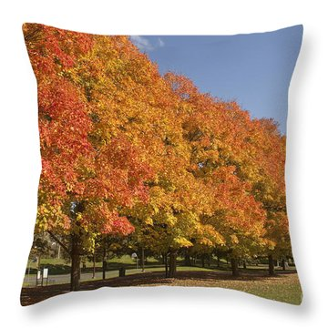 Corning Fall Foliage 2 Throw Pillow