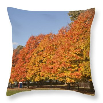 Corning Fall Foliage 3 Throw Pillow
