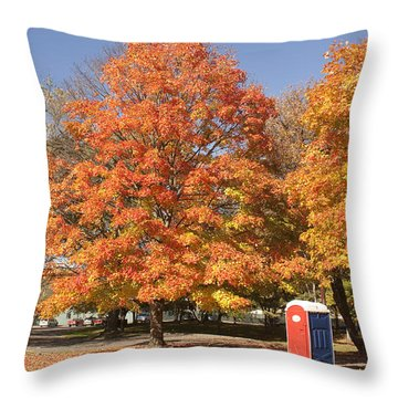 Corning Fall Foliage - 4 Throw Pillow