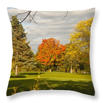Corning Fall Foliage 5 Throw Pillow