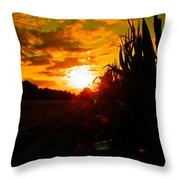 Cornset Throw Pillow by Nick Kirby