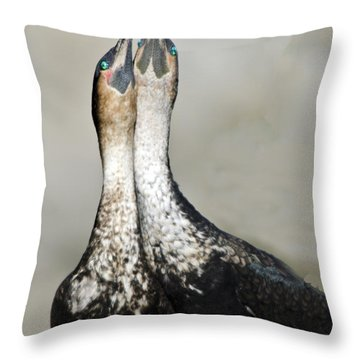 Cororant Pair Necking Throw Pillow
