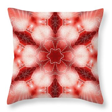 Cosmic Spiral Kaleidoscope 22 Throw Pillow