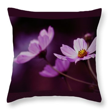 Throw Pillow featuring the photograph Cosmo After Glow by Kay Novy