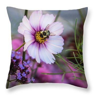 Cosmos And Friend Throw Pillow