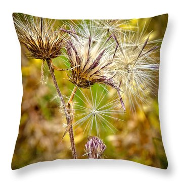 Throw Pillow featuring the photograph Cotten Grass by Jim Thompson