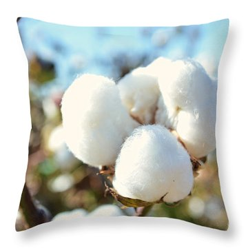 Cotton Boll Iv Throw Pillow by Debbie Portwood