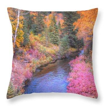 Cotton Candy Creek Throw Pillow