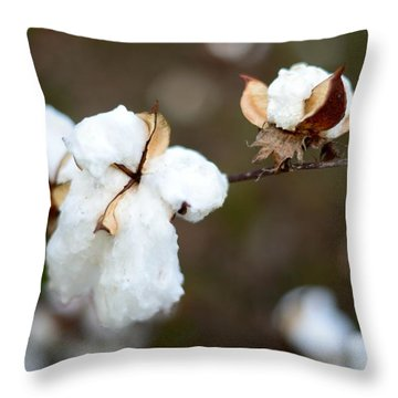 Throw Pillow featuring the photograph Cotton Creations by Linda Mishler