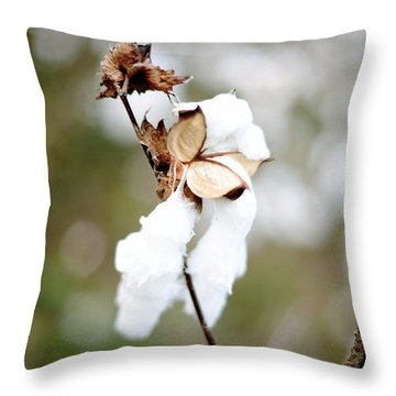 Throw Pillow featuring the photograph Cotton Picking by Linda Mishler