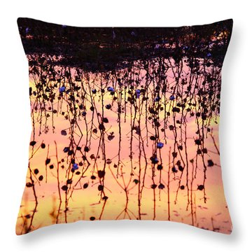 Cotton Reflections Throw Pillow by Marty Fancy