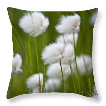Cottonsedge Throw Pillow