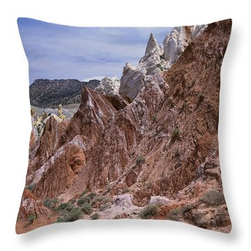 Cottonwood Spires 1-v Throw Pillow