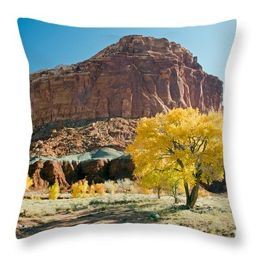 Cottonwoods In Fall The Castlecapitol Reef National Park Throw Pillow
