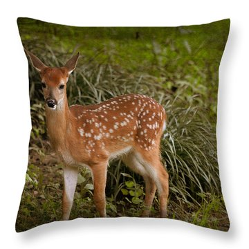 Could It Be Bambi Throw Pillow