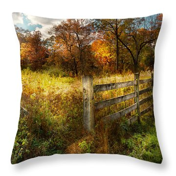 Country - Autumn Years  Throw Pillow by Mike Savad