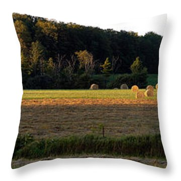 Country Bales  Throw Pillow