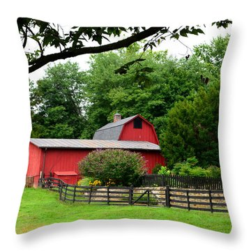 Country Barn Vineyard Throw Pillow