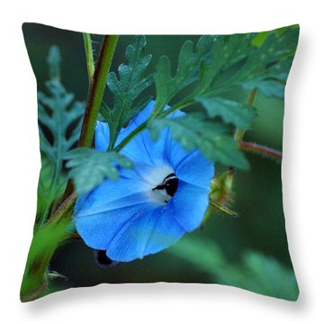 Country Blue Throw Pillow by Kim Pate