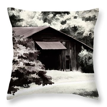 Country Charm In Dramatci Bw Throw Pillow by Darren Fisher