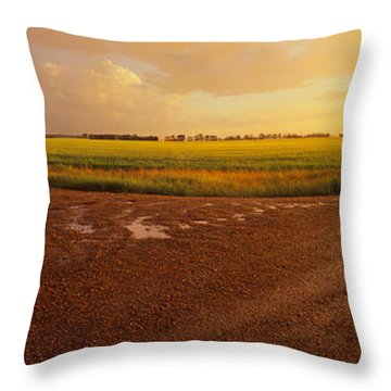 Country Crossroads Passing Throw Pillow