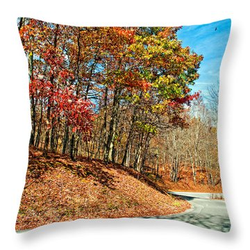 Country Curves And Vultures Throw Pillow by Steve Harrington