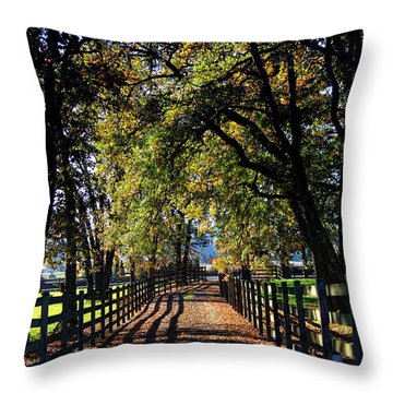 Throw Pillow featuring the photograph Country Drive by Aaron Berg