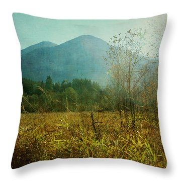 Throw Pillow featuring the photograph Country Drive by Sylvia Cook