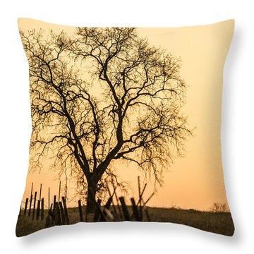 Country Fence Sunset Throw Pillow