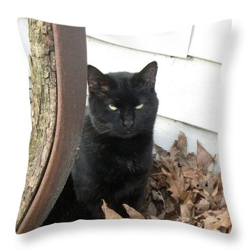 Country Kitty Throw Pillow