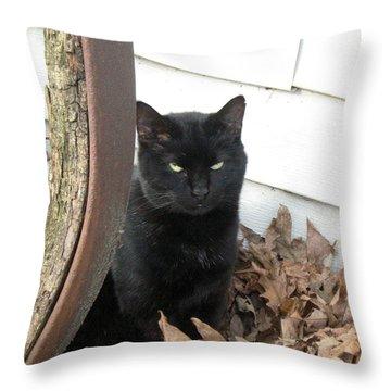 Country Kitty Throw Pillow