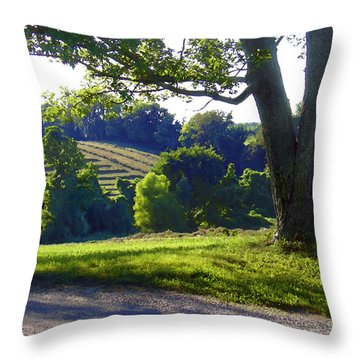 Country Landscape Throw Pillow by Steve Karol