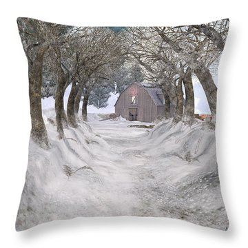 Country Lane In Winter Throw Pillow