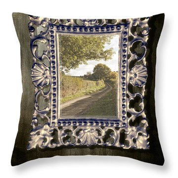 Country Lane Reflected In Mirror Throw Pillow by Amanda Elwell