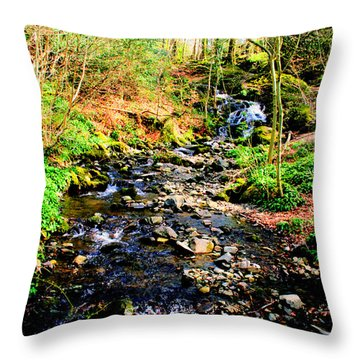 Throw Pillow featuring the photograph Country Life by Doc Braham