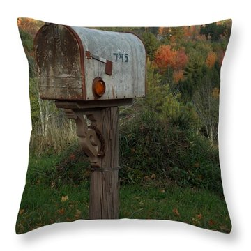 Country Mail Box Throw Pillow