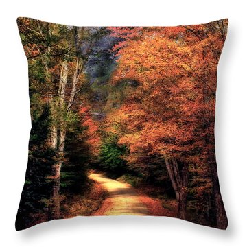 Country Road Throw Pillow by Brenda Giasson