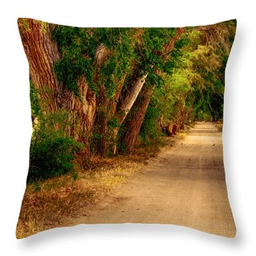 Country Road Throw Pillow by Fred Larson