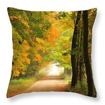 Throw Pillow featuring the photograph Country Road In Autumn by Terri Gostola