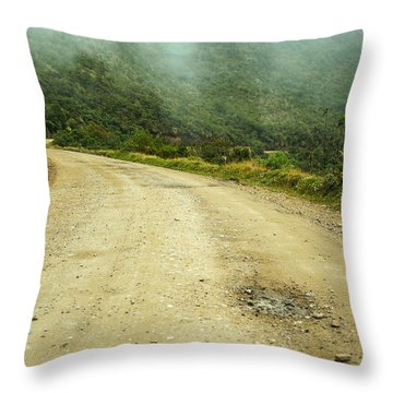 Country Road In Colombia Throw Pillow by Jess Kraft