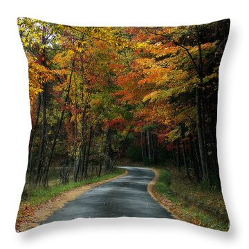 Country Road Throw Pillow by Melissa Petrey