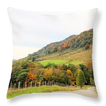 Country Road Take Me Home Throw Pillow
