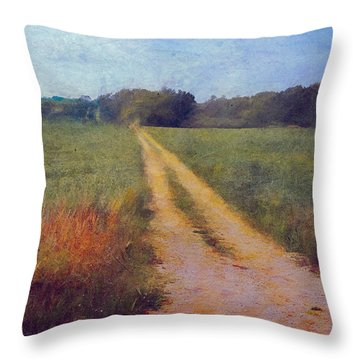 Country Road Textured Photograph Throw Pillow