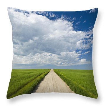 Country Road Through Grain Fields Throw Pillow by Dave Reede