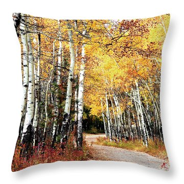 Country Roads Throw Pillow by Steven Reed