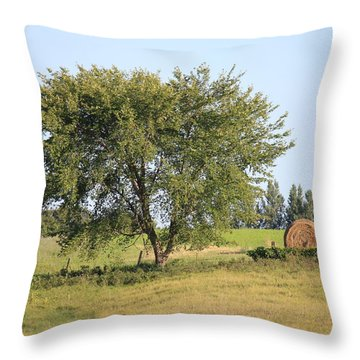 Throw Pillow featuring the photograph Country Scene by Penny Meyers