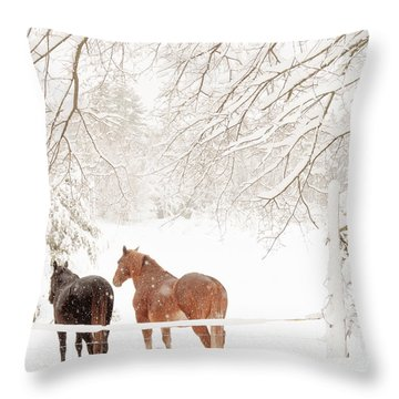 Country Snow Throw Pillow by Cheryl Baxter