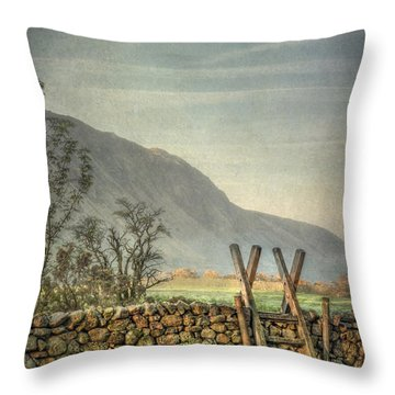 Country Spirit Throw Pillow