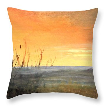 Country Sunset Jo Daviess Throw Pillow