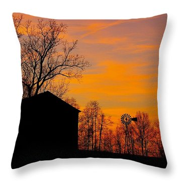 Country View Throw Pillow by Randy Pollard